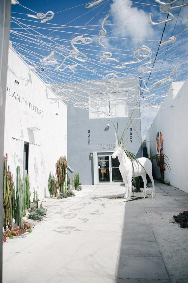 wynwood_horse_ps