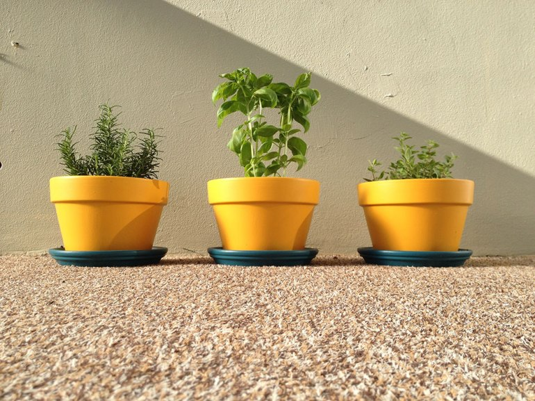 garden_done_ps